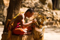 Monk and Tiger