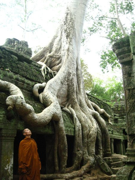 Temples of Anghkor Siem Reap Cambodia. Photo by Adrian Landin.
