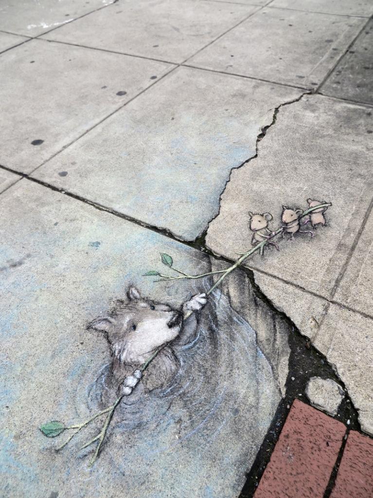 Grey Wolf Rescued. Drawing By David Zinn.